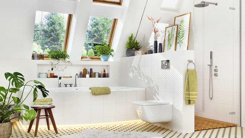 Zimmerpflanzen für das Bad